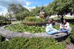 Imagen de estudiantes en la Fuente UPR Cayey