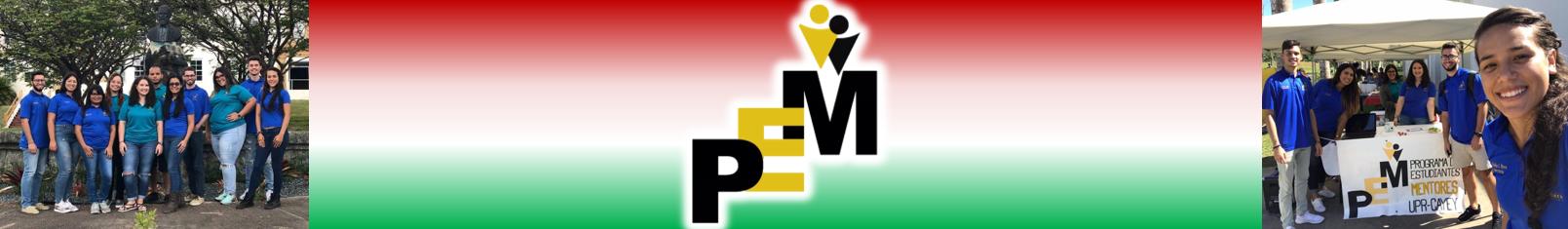Banner de la página del PEM