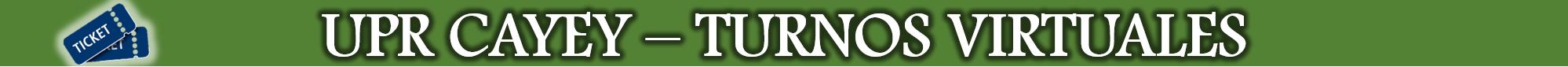 Imagen del Banner Turnos Virtuales Principal