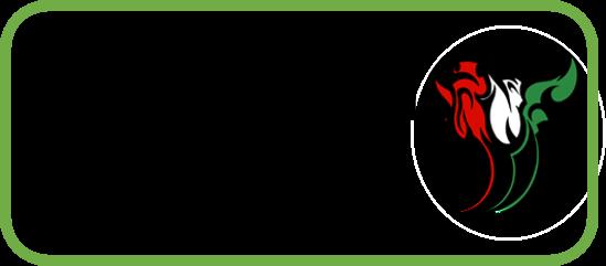 Imagen Botón para acceder a formulario de admisión agosto 2021