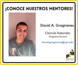 Información sobre David A. Gragirenes